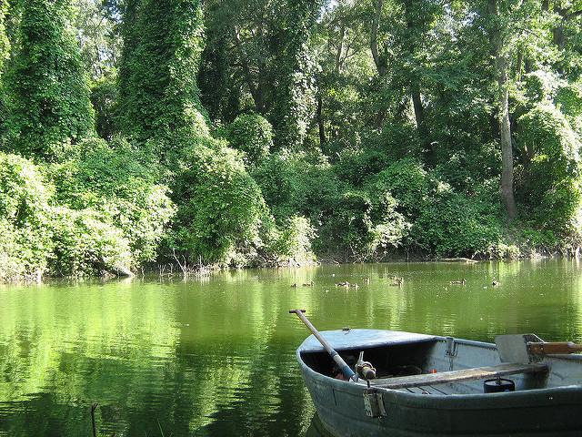 A Kis Duna horgászat szövetségének sikerei és törekvései
