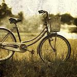 Keressen megbízható kerékpár szervizt!